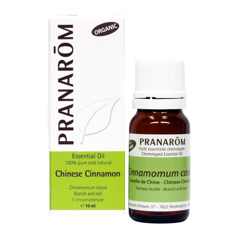 Chinese Cinnamon Chemotyped Essential Oil