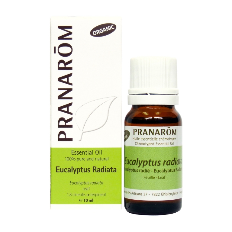 Eucalyptus Radiata Chemotyped Essential Oil