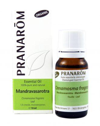 Mandravasarotra (Saro) Chemotyped Essential Oil