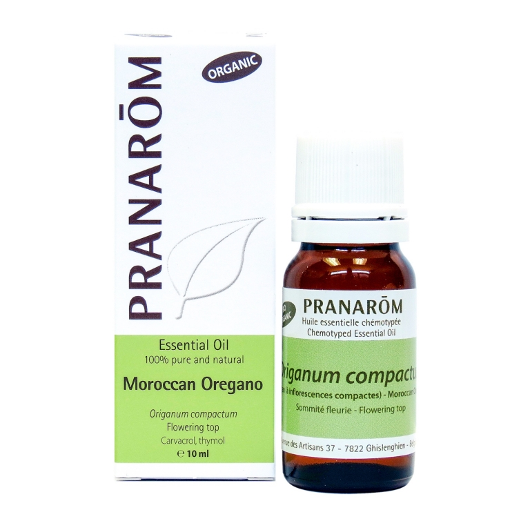 Moroccan Oregano Chemotyped Essential Oil