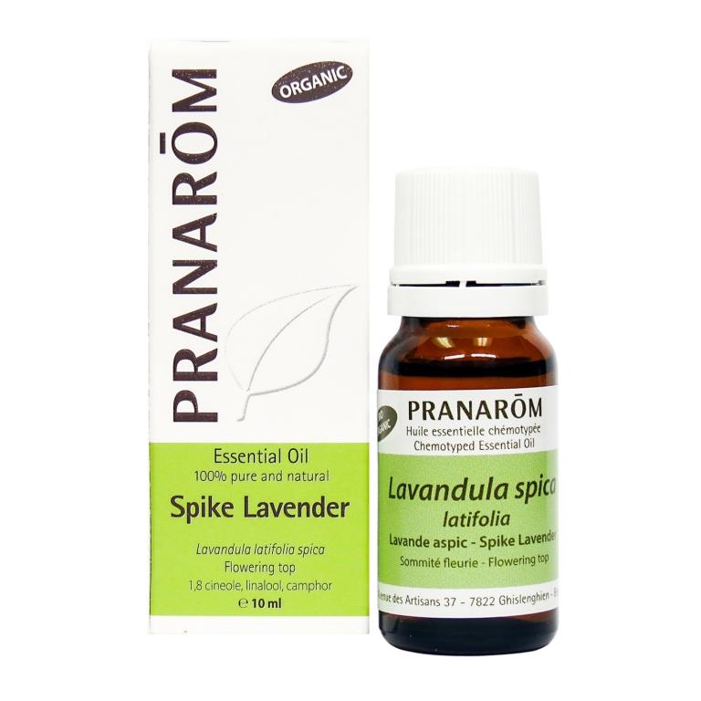Spike Lavender Chemotyped Essential Oil