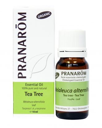 Tea Tree Chemotyped Essential Oil, Essential Oils for Dry Cough