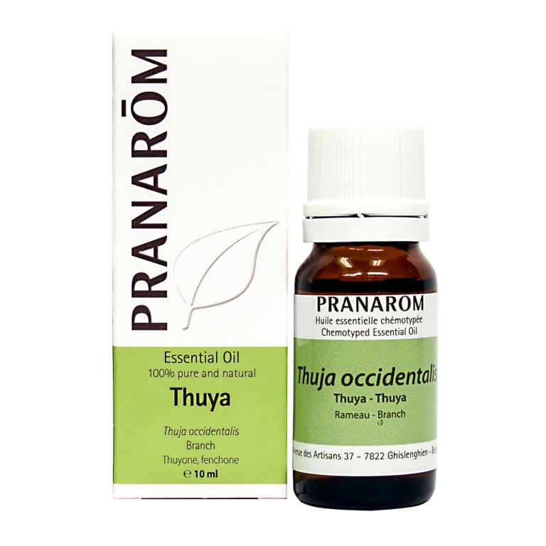 Thuya Chemotyped Essential Oil, Pranarom Essential Oils Online