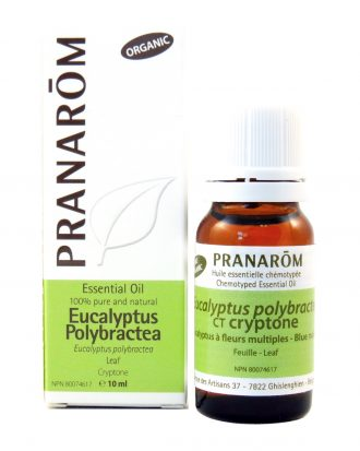 Eucalyptus Polybractea Chemotyped Essential Oil, Essential Oils Good for Headaches